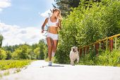 young athletic woman running on the road with white labrador, exercise outdoors poster