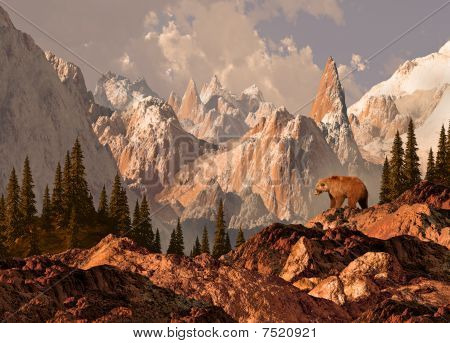 Mountain Grizzly Bear