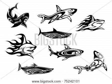 Fierce shark icons swimming underwater, some trailing flames, in black and white vector illustrations for tattoo or mascot design poster