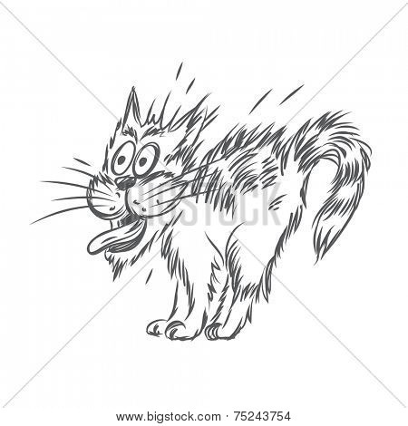 Vector sketch of scared cat