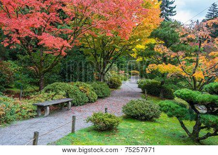 Autumn Colors in Arboretum Park