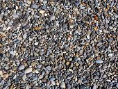 Various sea pebbles closeup on the coastline poster