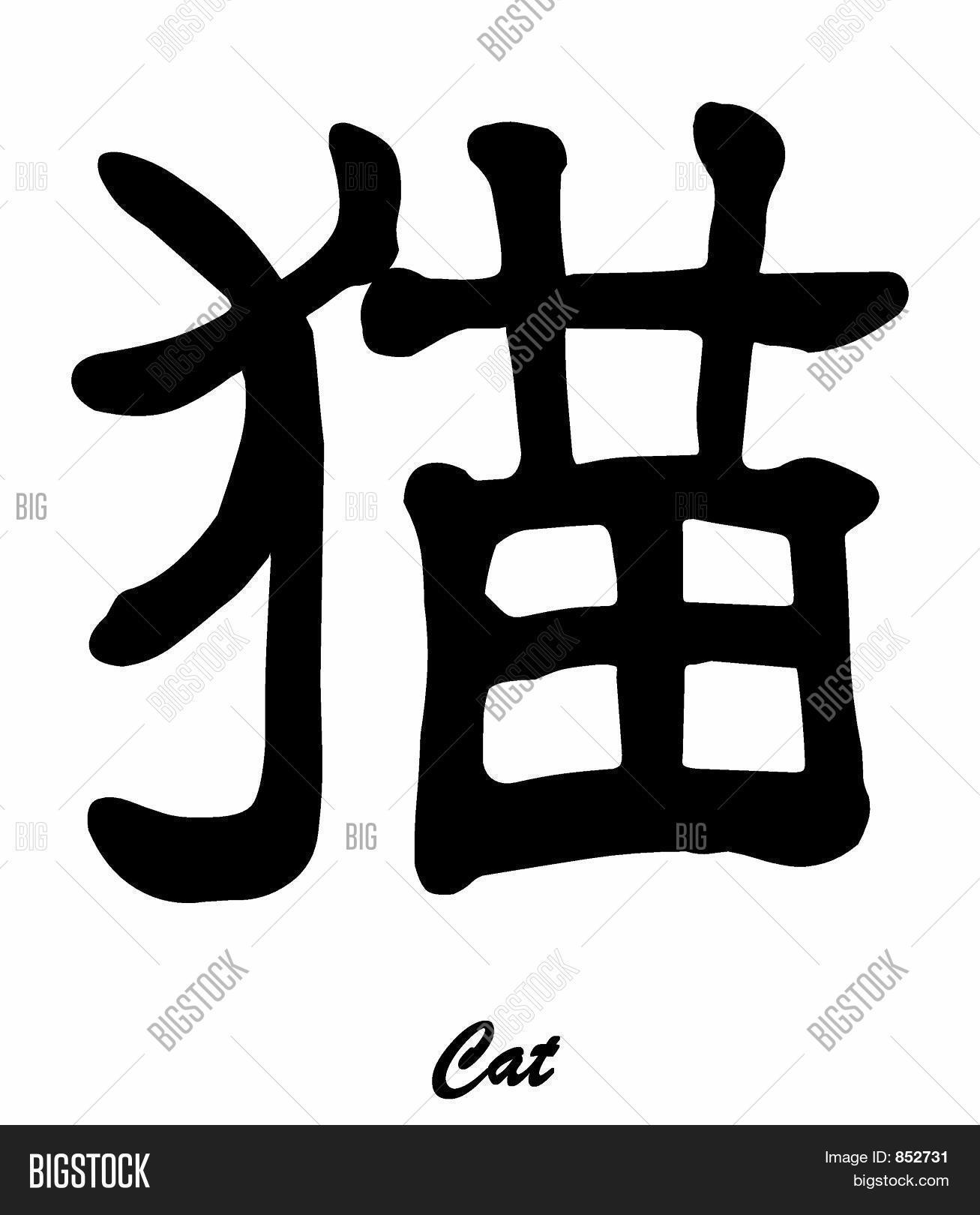 Cat Kitten Chinese Image Photo Free Trial Bigstock