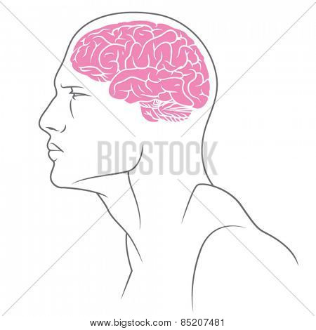 Illustration of male body with brain.