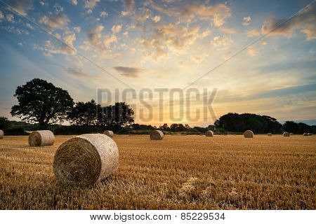 Rural Landscape Image Of Summer Sunset Over Field Of Hay Bales