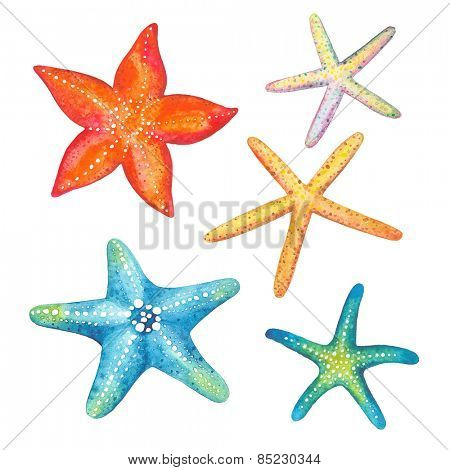 Collection of starfish watercolor, vector illustration.