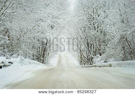 Winter Landscape Of A Road