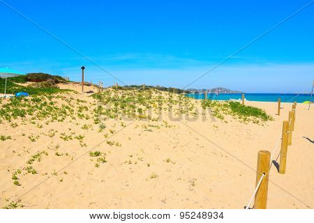 Beach Entrance In Porto Pollo
