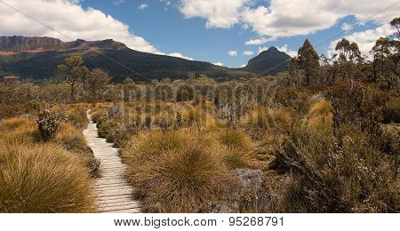 Track In Walls Of Jerusalem - Tasmania (australia)..