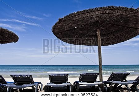 Sandy beach with empty loungers and umbrellas