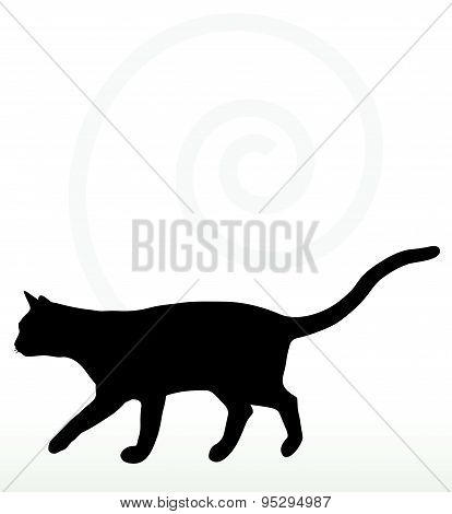 Cat Silhouette In Walking Pose