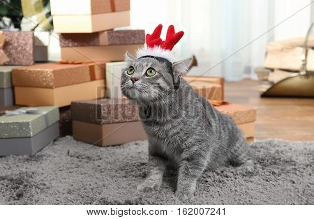 Cute cat with Christmas reindeer antlers on carpet at home