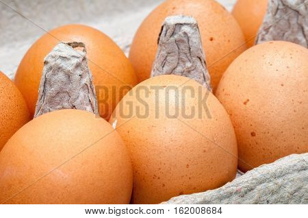 Farm fresh chicken eggs in cardboard carton, ready for stocking on supermarket shelves.