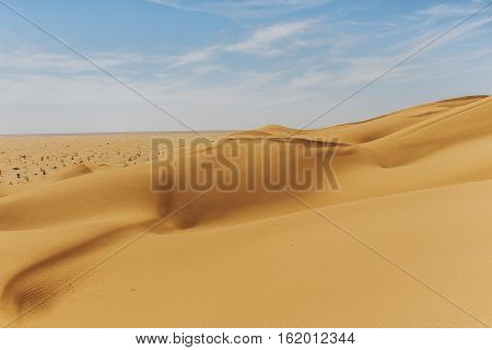 outdoor dry sand pattern dune in oman old biggest desert rub al khali