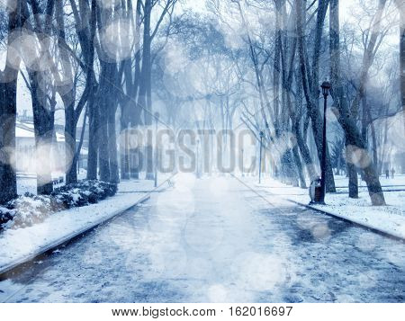 an image of snow covered empty road with trees
