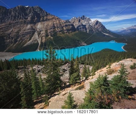 Peyto is a glaciated lake in Banff Alberta Canada. It gets it's color from the sediments of the glacier melt.