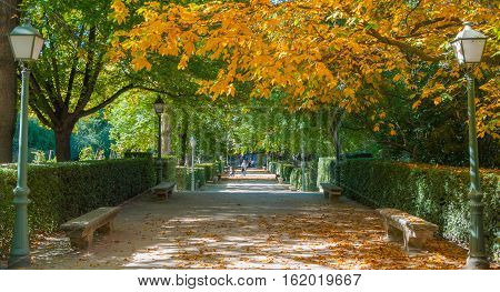 Madrid, Spain - November 9th, 2013:    Tourism in Spain.  A young family explores one of Spain's largest Public Gardens in the city of Madrid - Retiro park.