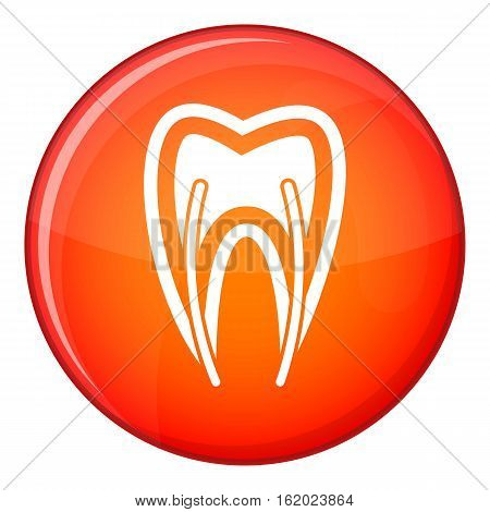 Tooth cross section icon in red circle isolated on white background vector illustration