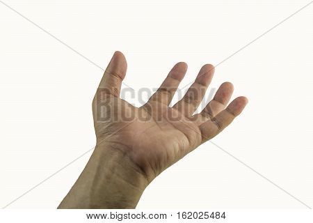 left hand isolate on white background - can use to display or montage on product