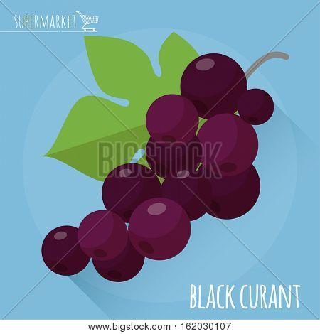 Black currant. Long shadow flat design vector icon.