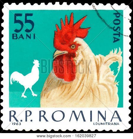 ROMANIA - CIRCA 1963: Postage stamp printed in Romania shows, a series of poultry