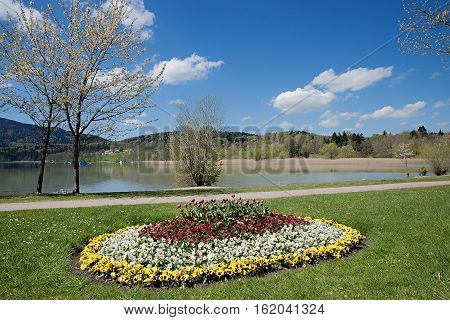 Lakeside Promenade Tegernsee With Colorful Flowerbed