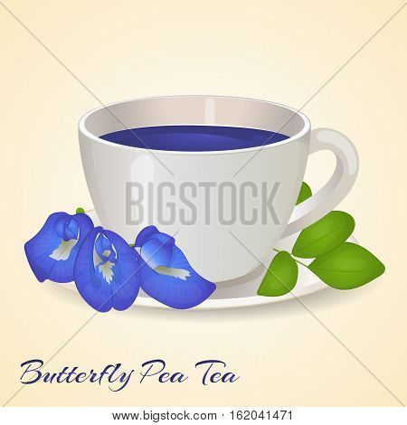 Cup of Blue tea with Butterfly Pea flowers and leaves isolated on orange background. Blue Pea Tea. Clitoria Ternatea. Vector illustration. Healthy drinks.