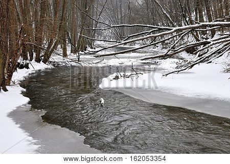 Rokytna River in winter, Moravia, Czech Republic, Europe