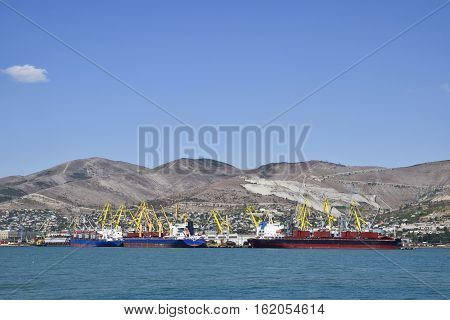 Cargo Port With Port Cranes. Sea Bay And Mountainous Coast.