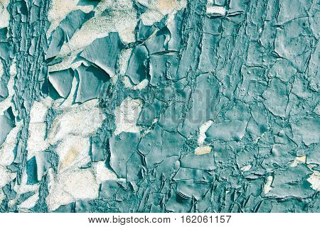Peeling paint background. Peeling paint background or texture full frame. Close up.
