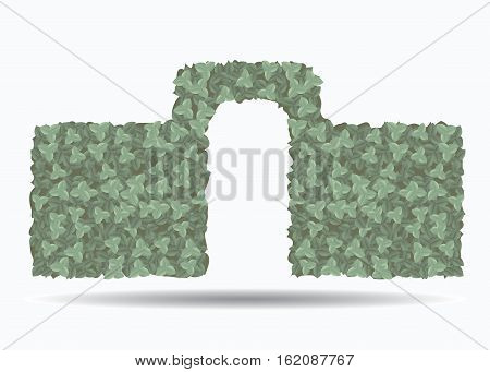 Green hedge with an arch isolated on white background .. An element of landscape design. Vector illustration.