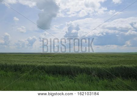Photography: A landscape of the Canadian Prairies during a cloudy day. Saskatchewan, Canada.