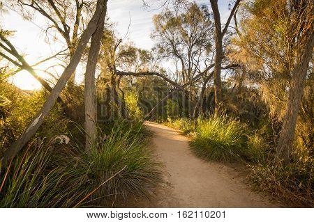 Path through Wave Rock Hyden Western Australia sunset scene .