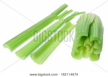 Fresh Celery Stalks on Isolated White Background