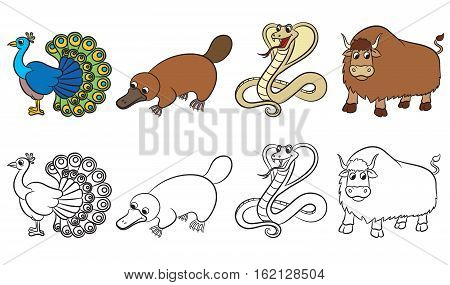 Cute zoo animals collection. Coloring page. Vector illustration