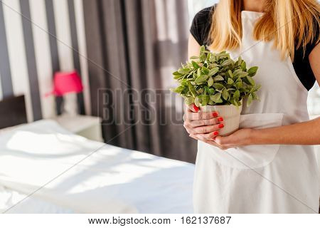 Woman In White Apron Holding House Plant