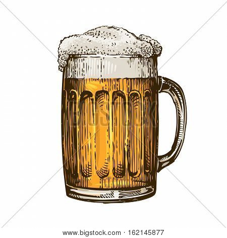 Beer in glass mug with foam. Hand drawn vector illustration isolated on white background