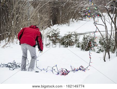 Person bending down over string of lights to check Christmas holiday lighting and wiring to put Christmas decorations outdoors on the trees in the snow background image with room for copy