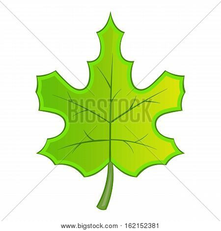 Green maple leave icon. Cartoon illustration of green maple leave vector icon for web