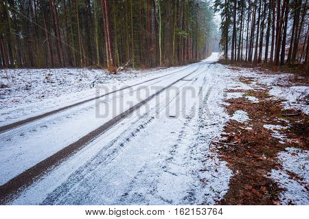 Sandy Road In Winter Forest