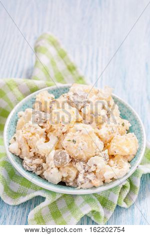 Potato salad with a sour cream sauce