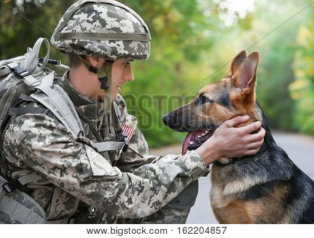 Soldier with military working dog on blurred background