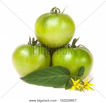 three green unripe tomato with a flower and leaf isolated on white background.