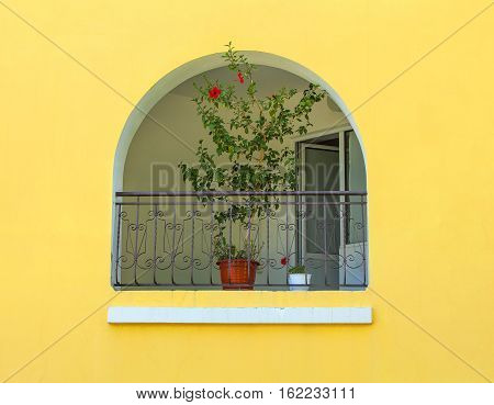 semicircular window with a flower on a yellow wall