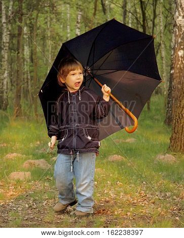Child holding umbrella walking in the forest on a sunny fall day. Natural light sunset