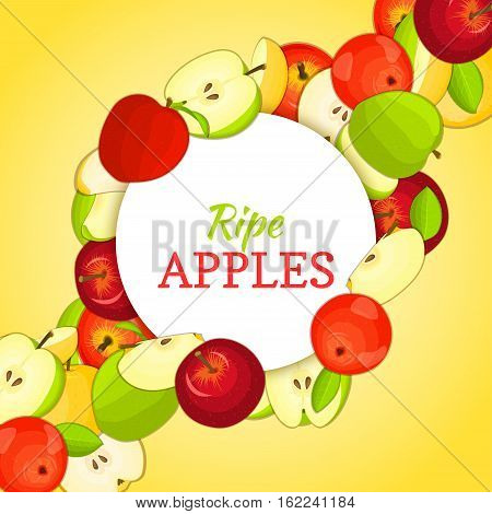 Round white frame on ripe apple diagonal composition background. Vector card illustration. Delicious fresh and juicy apples whole, peeled piece of half slice leaves seed. appetizing looking