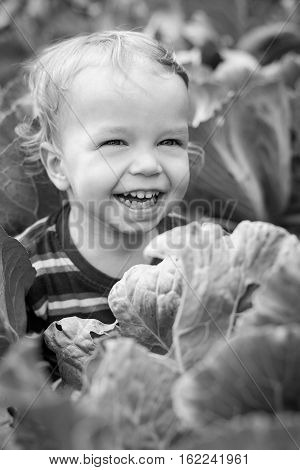 portrait of a happy toddler boy in cabbage ( black and white )