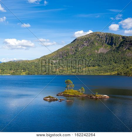 Norwegian summer landscape with small island on a lake