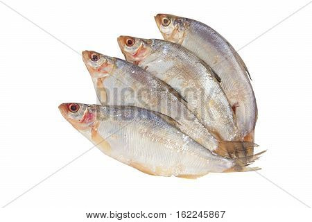 peled raw fish on a white plate on a white background poster