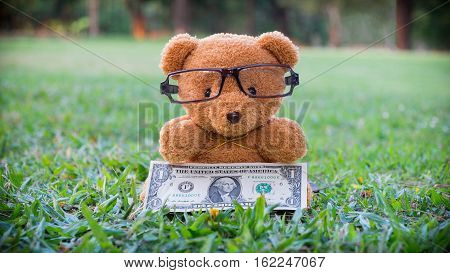 Brown teddy bear holding dollar banknote. Saving for retirement Saving for education Saving for Stability